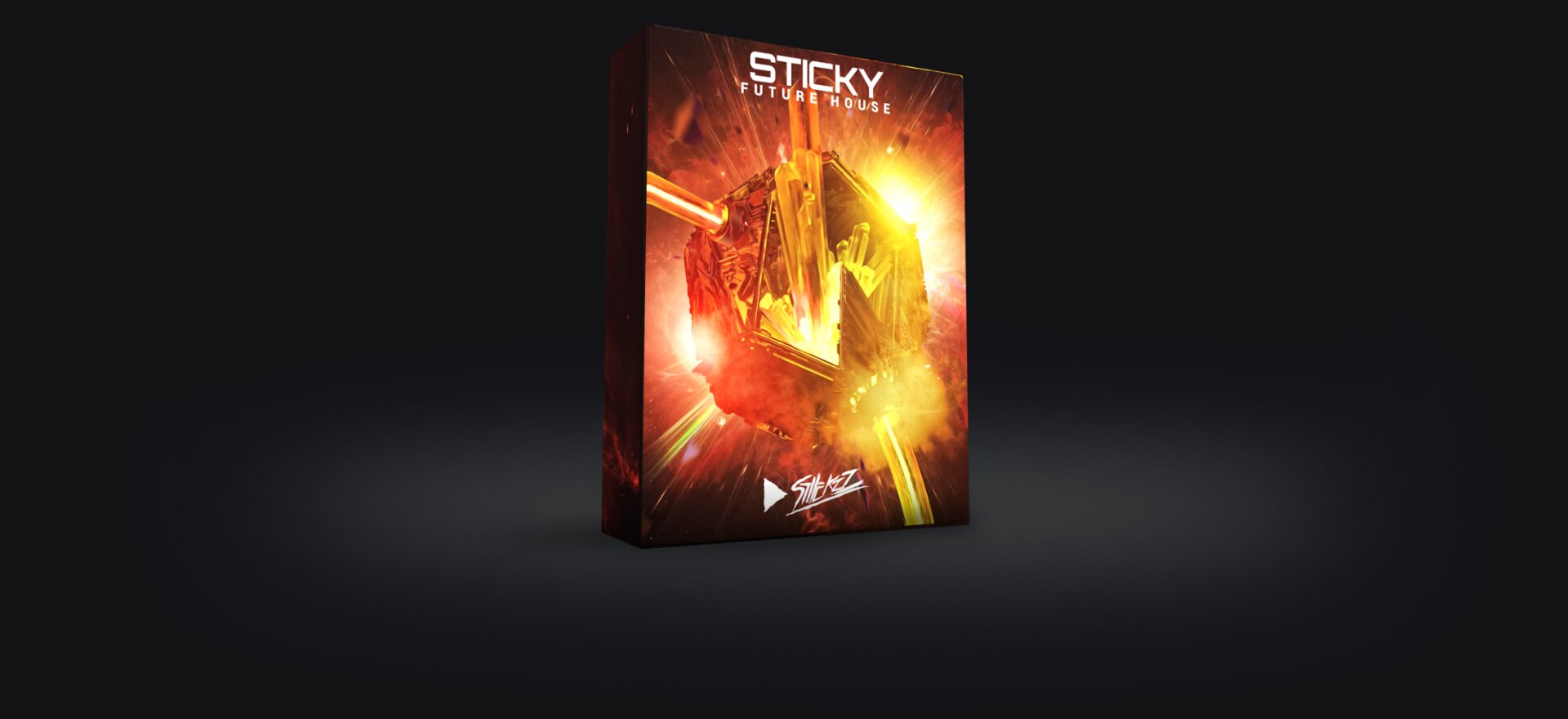 Sticky Future House - Box